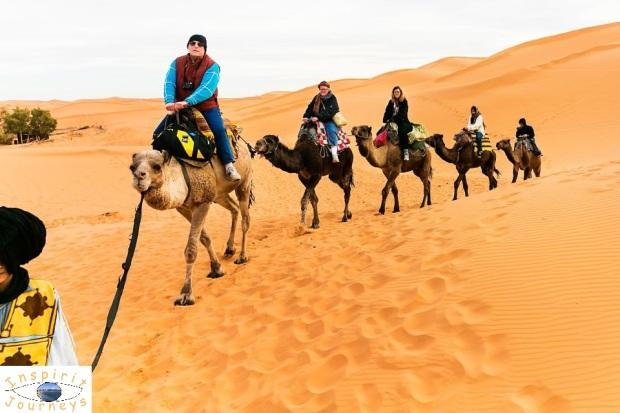 Camel Rides in Morocco.jpg
