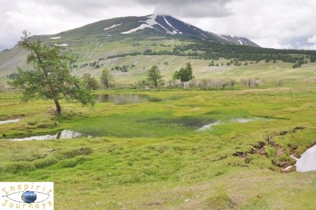 mongolian-grassland-1