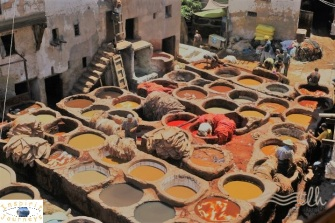 Tannery @ Fez -edited